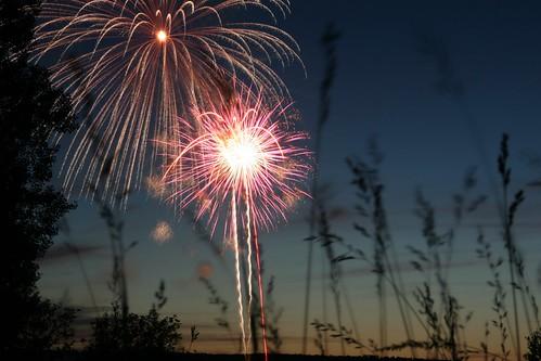 Firework   by spi516