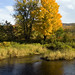 Foliage by the River by Vermont Lenses