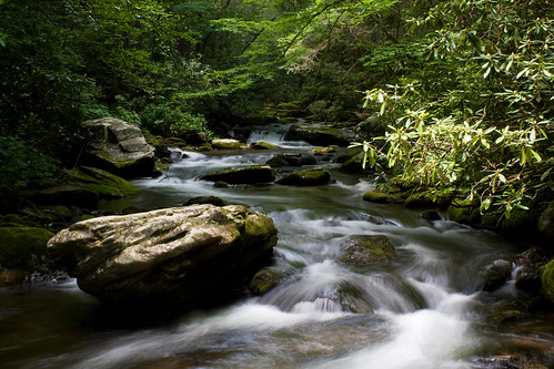 longexposure green water nc moss rocks stream hiking northcarolina hike greatsmokymountainsnationalpark cataloocheevalley haywoodcounty palmercreek davidhopkinsphotography