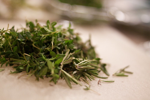 Rosemary and Thyme | by KeriFlur