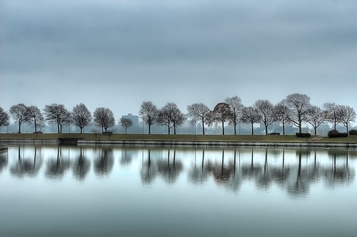 morning autumn reflection tree fall water 1025fav early quiet cloudy michigan ripple bare sunday detroit peaceful calm reflect hdr belleisle muted