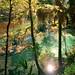 Gainer-Springs-8---8x10-