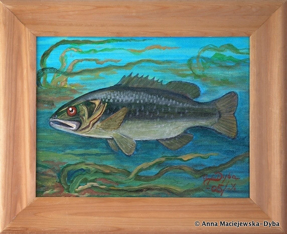 Large Mouth Bass Folkartanna Flickr