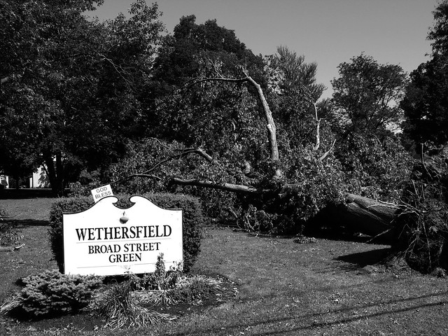 Old Wethersfield CT - Broad Street Green after June 2009 tornado