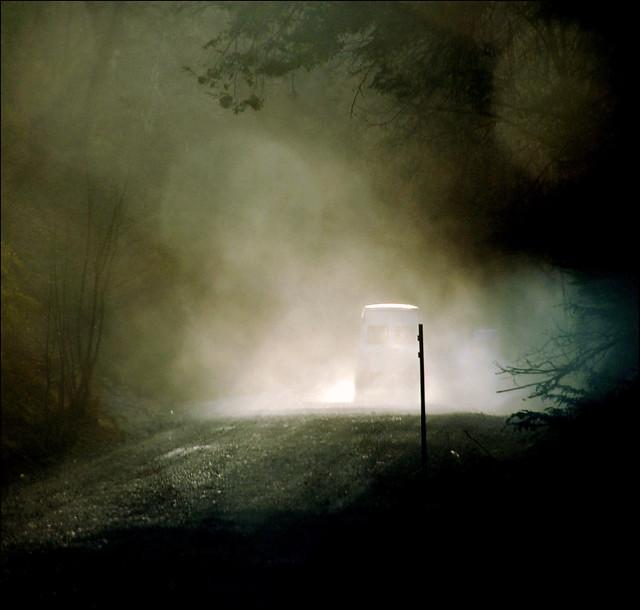 along my road...