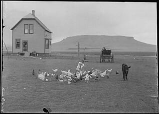 """""""Hancock homestead. Settler from Benson, Minn."""" By Lubkin, June 23, 1910"""