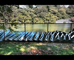 Les Barques de Central Park