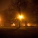 Thanksgiving Fog - Albany, NY - 09, Nov - 06