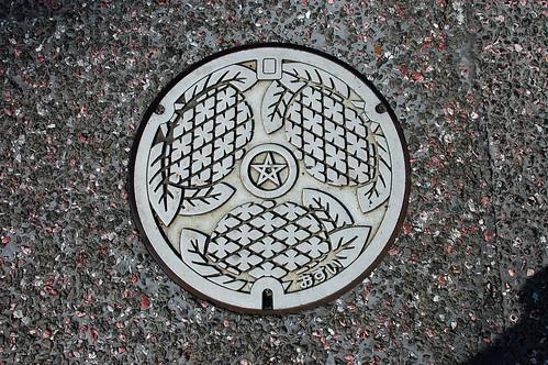 Nagasaki Manhole Cover 6 | by Bracus Triticum