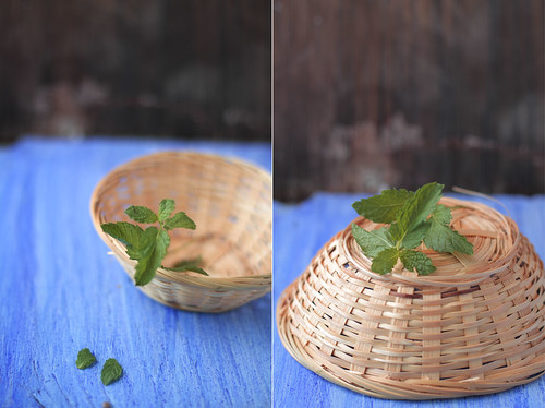 Mint | by JourneyKitchen