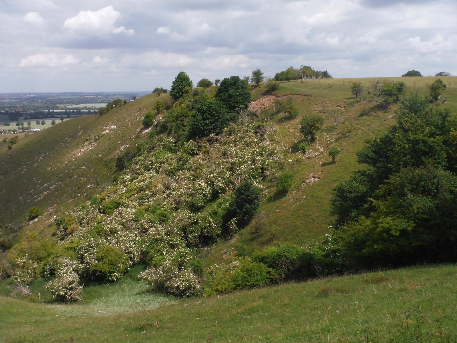 Pegsdon Hills SWC Walk 234 Hitchin Circular