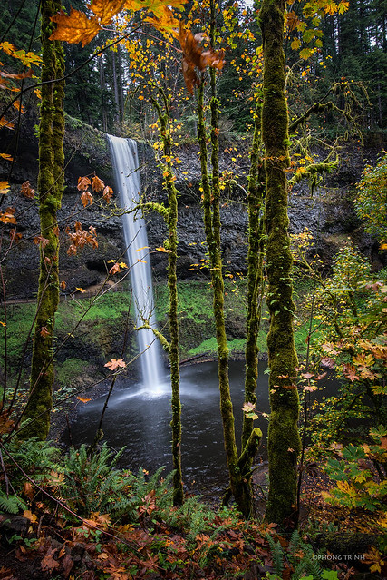 Silver Falls, Silver Falls State Park, OR