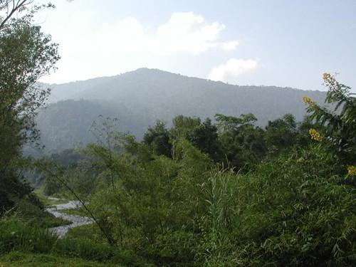 Tue, 11/07/2000 - 09:46 - Landscape of Khao Chong. Credit: CTFS