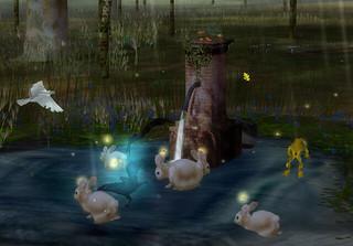 Bunnysandcrows