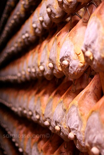 Rows of Maturing Prosciutto Crudo Ham from Parma, ready for Sale | by MsAdventuresinItaly