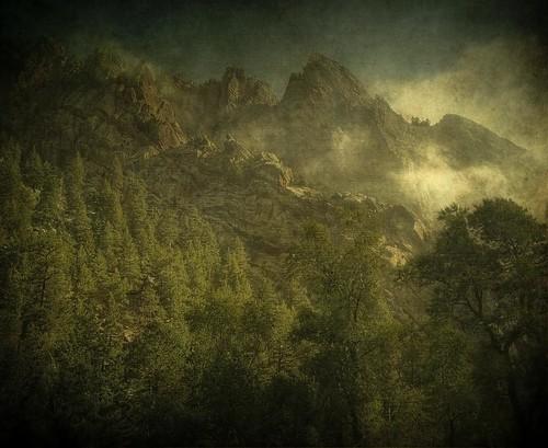 morning trees fog pine forest landscape colorado rocks cliffs hdr rugged textured layered fauxvintage eldoradocanyonstatepark kartpostal