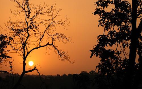 sunset india forest sunrise landscape twilight goa environment tivim