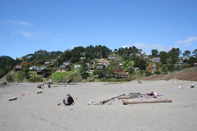 Muir Woods and Beach