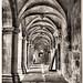 Salzedas_mosteiro_claustro06_sp