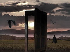 She left the Door open | by h.koppdelaney