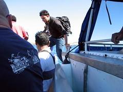 Boat to Boat transfer