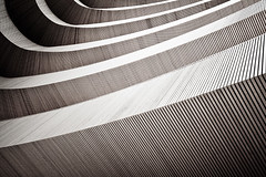 wooden curves no.5