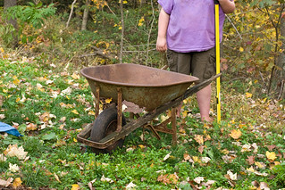 Permaculture: How to use this wheelbarrow | by nikaboyce