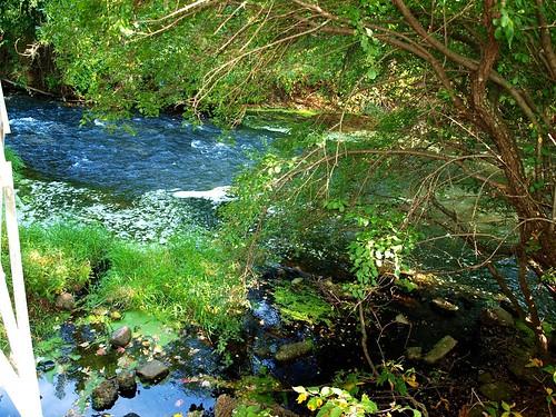 river wi irvinepark chippewafalls olympuse520