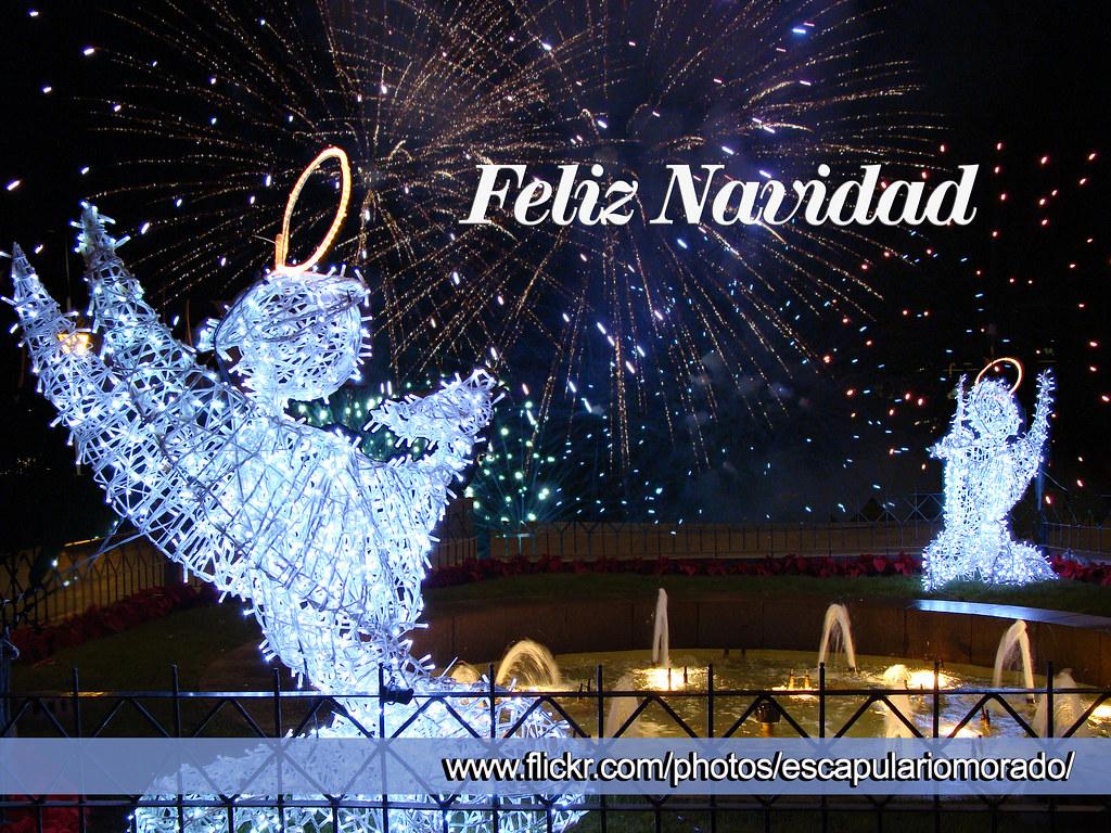 Feliz Navidad Merry Christmas Joyeux Noël Feliz Navid