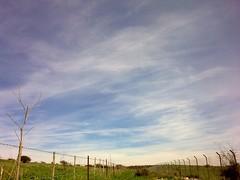 Zichron-Shimi_H Paragliding