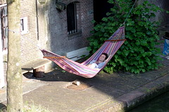dad and baby in hammock, Utrecht