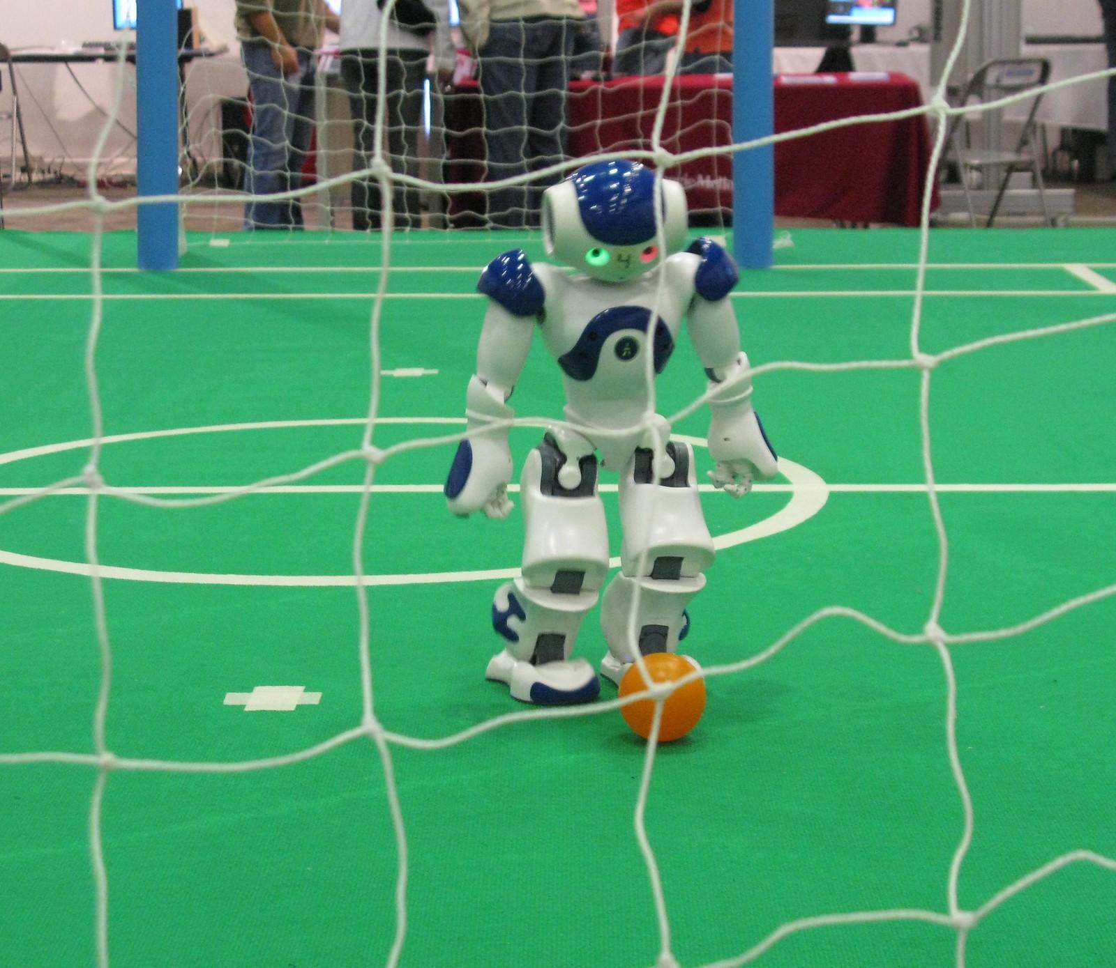 Autonomous robot soccer (football) player