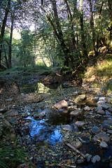 Bucolic-Wildcat-Creek