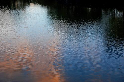 sunset reflection rain hawaii japanesegarden bigisland hilo lilioukalanigardens