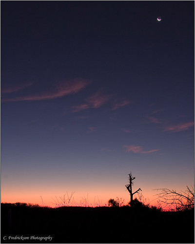 morning november moon st sunrise stars island george twilight brush scrub 2009 tamron18250