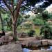 Roca de la Meditacion / Meditation Rock by Far & Away (On assigment, mostly off)