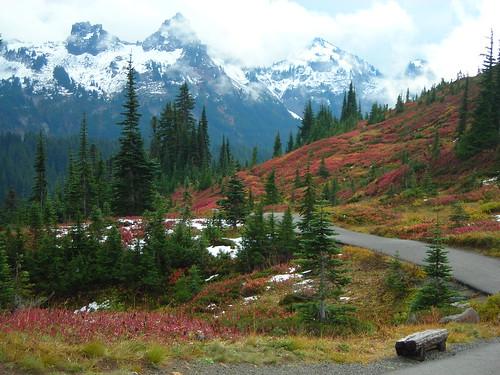 Paradise, Mt Rainier-28   by swede 56