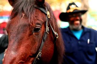 Urban Cowboy (2)
