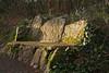 Druid's chair Killiney~ HBM