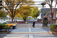 Shinjuku Crosswalk