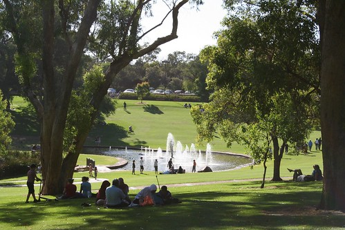 Kings Park Perth, Western Australia