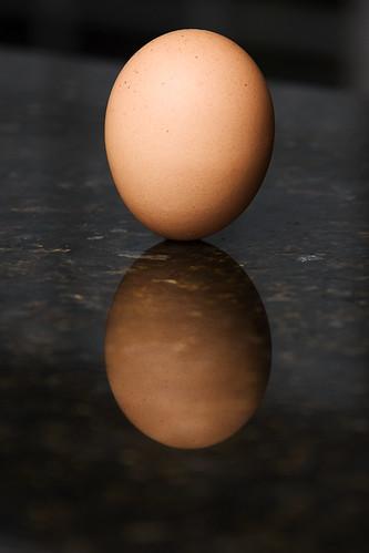 egg balance autumnal equinox ghholt storybookwinner