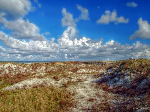 nearlyperfect ponceinletflorida daytonabeacharea florida coastal beach dunes seaoats walkway scenic landscape ocean atlanticocean clouds sky bluesky