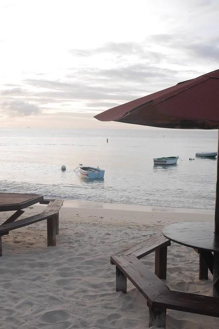 水, 2017-02-15 16:54 - Coconut Beach
