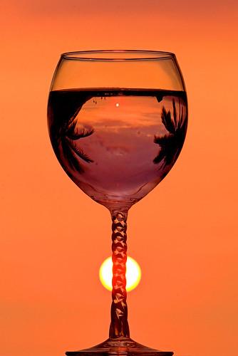 sunset sun hawaii palmtrees wineglass 414