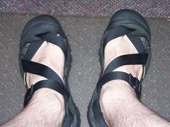 4e18d6ead0bf keen zerraport sandal