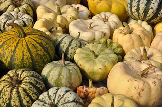 Winter Squash | by WhitA