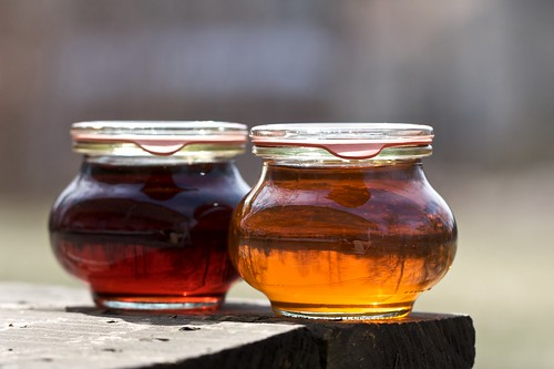 Homemade Maple Syrup | by Chiot's Run