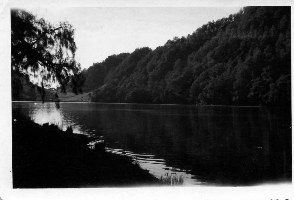 'in de wildernis' -  nature near the Indonesian city of Soerabaja  -  this picture was taken by my uncle Leen van der Groef (1916 - 1943) , who at the time was living and working as a KNIL-sergeant in Soerabaja in the former Dutch Indies (appr. 1939)