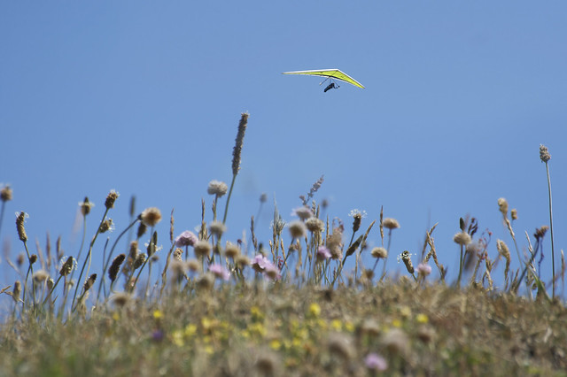 The tiny hang glider - Wight life slide show